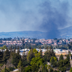 Planning in the Wildlife-Urban Interface in the age of increasing wildfire risk